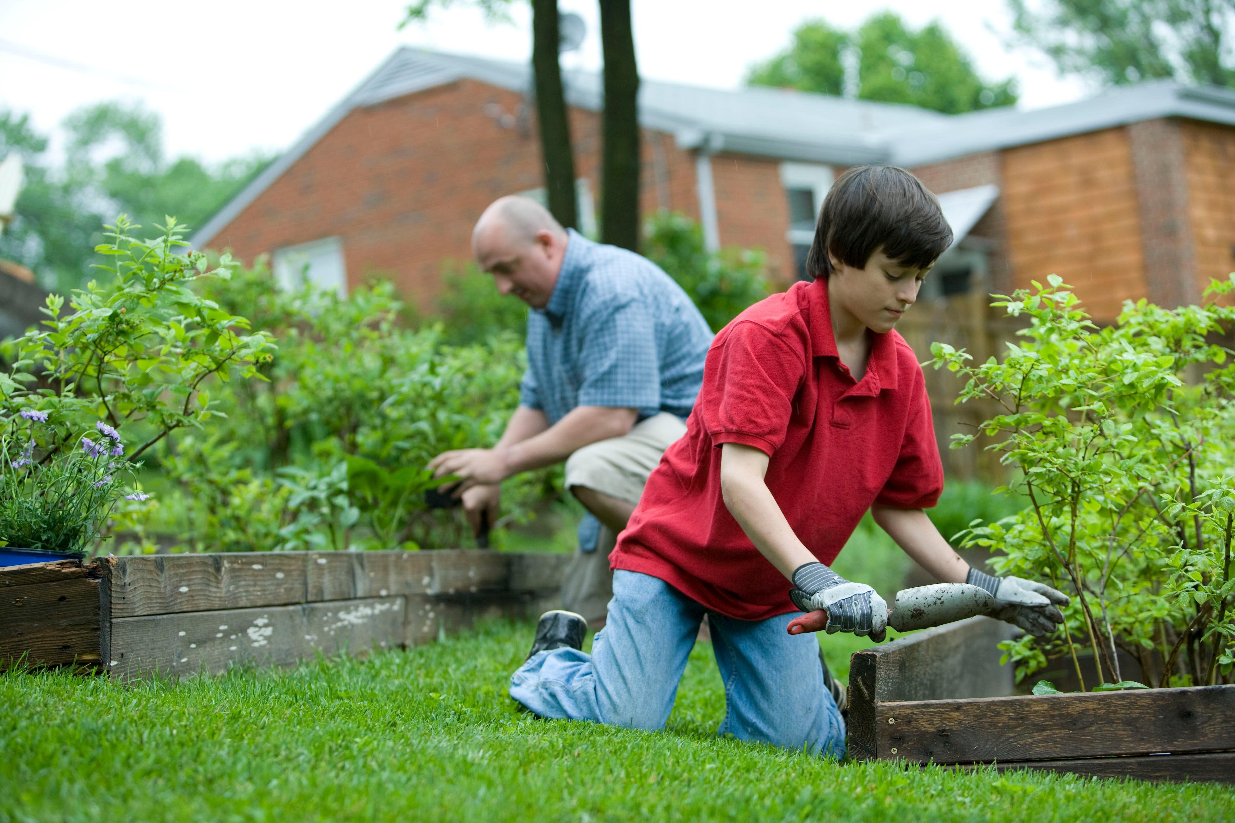 Community Gardening Stress and Wellbeing - Community Gardening